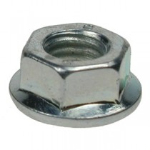 Hexagon Flange Nuts (Washer Faced)