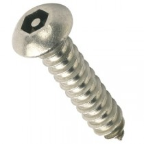Pin Hex Button Self Tapping Screws