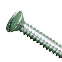 Slotted Raised Countersunk Head Self Tappers Head